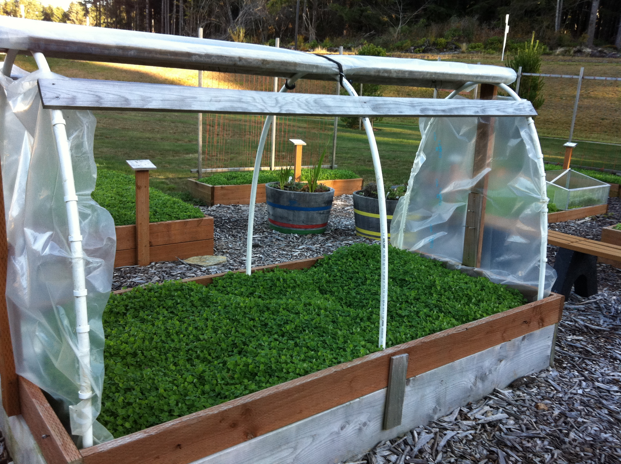 Essentials оf a Solar Greenhouse